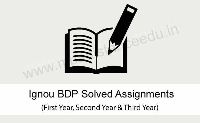 solved assignment of bdp